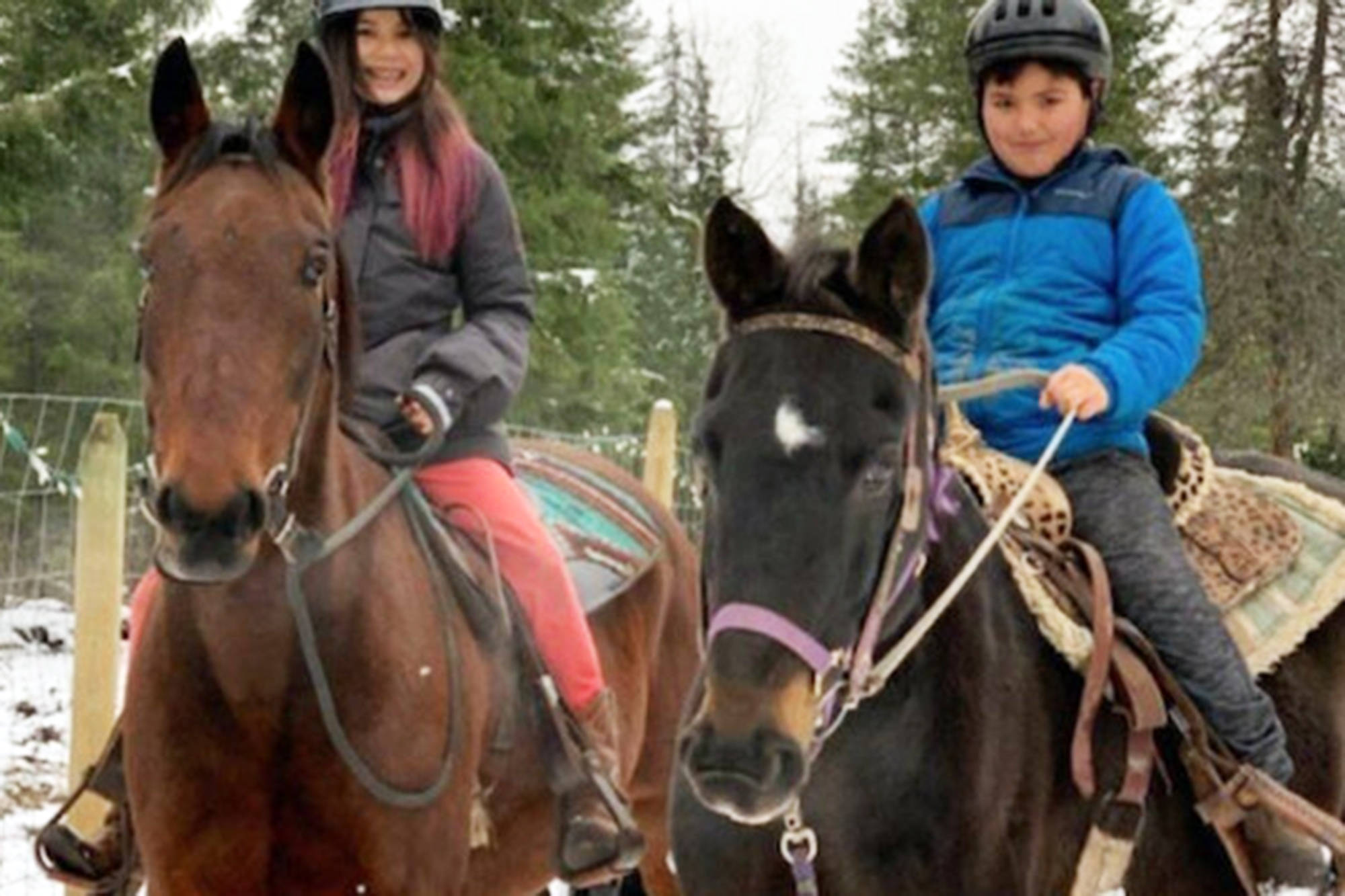 A GoFundMe page was launched for Malakwa's Sabiston family following a barn fire on Feb. 19 that left the family without feed and supplies for their horses. (GoFundMe photo)